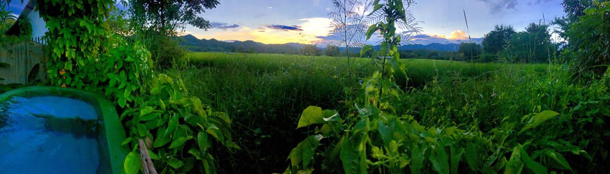 jules green sunset extreme nomads