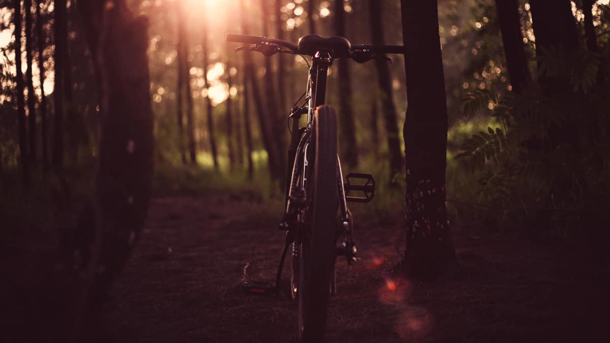 cycling alphacolor unsplash