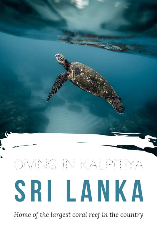 pinterest image with caption 'diving in kalpitiya- sri lanka'