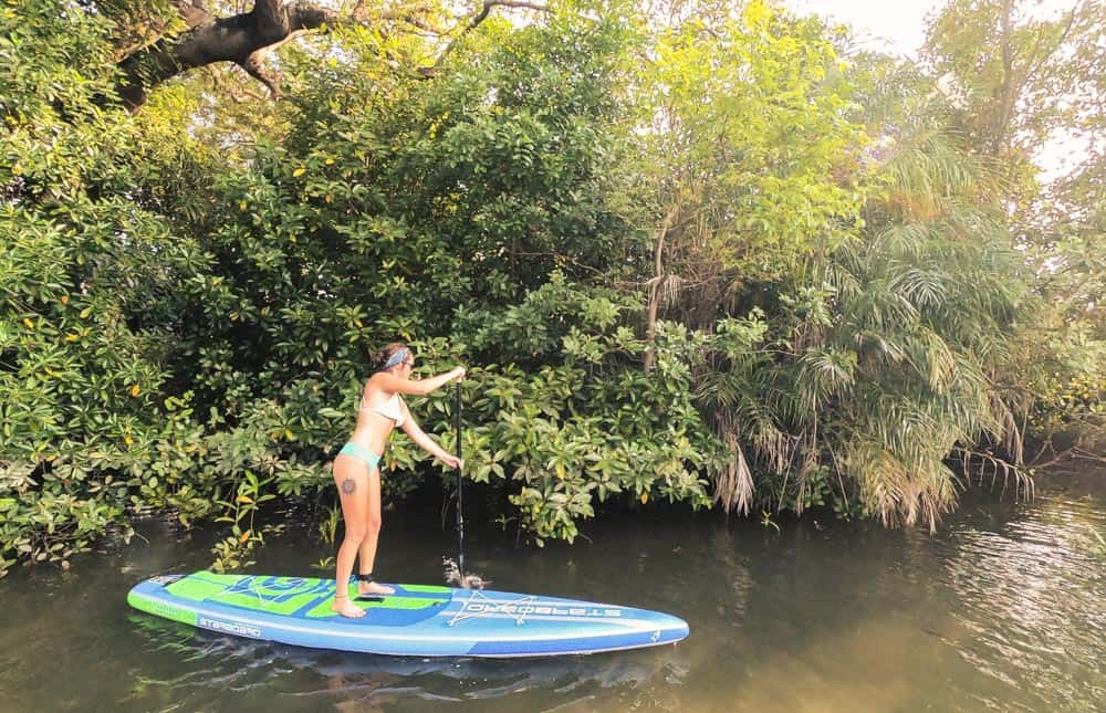 Grace stand up paddle boarding down pranburi river. SHe's wearing a blue and white bikini and paddle past the mangroves on an electric blue SUP.