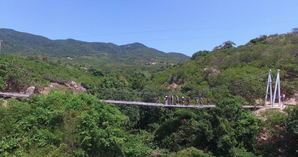 Pont aérien à travers les arbres à Phan Rang Vietnam