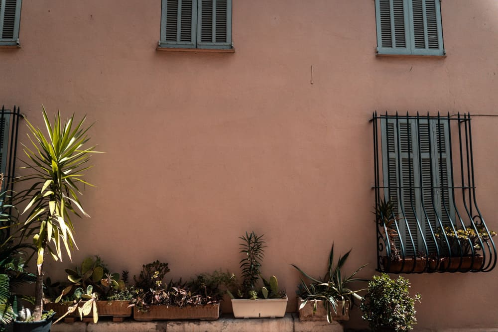beautiful terracotta wall and cacti in window boxes in Cannes' Old Town