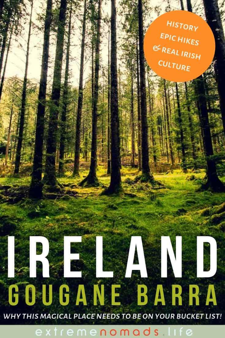 pinterest Bild mit einem Bild von den höchsten Bäumen in Gougane Barra Waldpark und eine Beschriftung, die lautet: Irland -- Gougane Barra - warum dieser magische Ort auf Ihrer Bucket List stehen muss