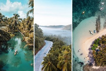 three part image featuring different scenes of siargao island's landscape: the first on a turquoise river, the second a winding road surrounded by palms, the third an aerial view of guyam island.