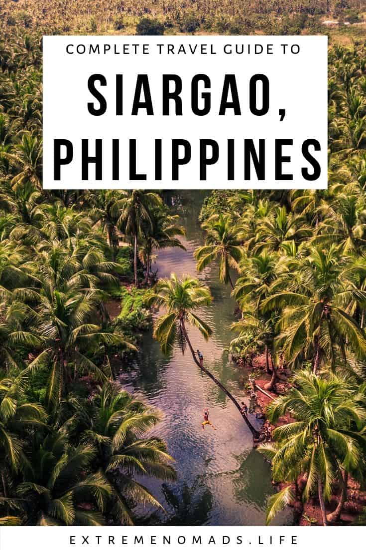 pinterest image with a picture of a thick grove of palm trees and a caption that reads: complete travel guide to siargao, philippines