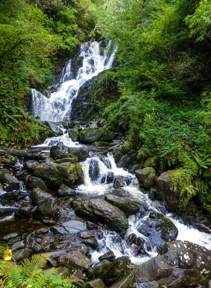 Torc waterfall gushing through lush greenery, Killarney, Ireland