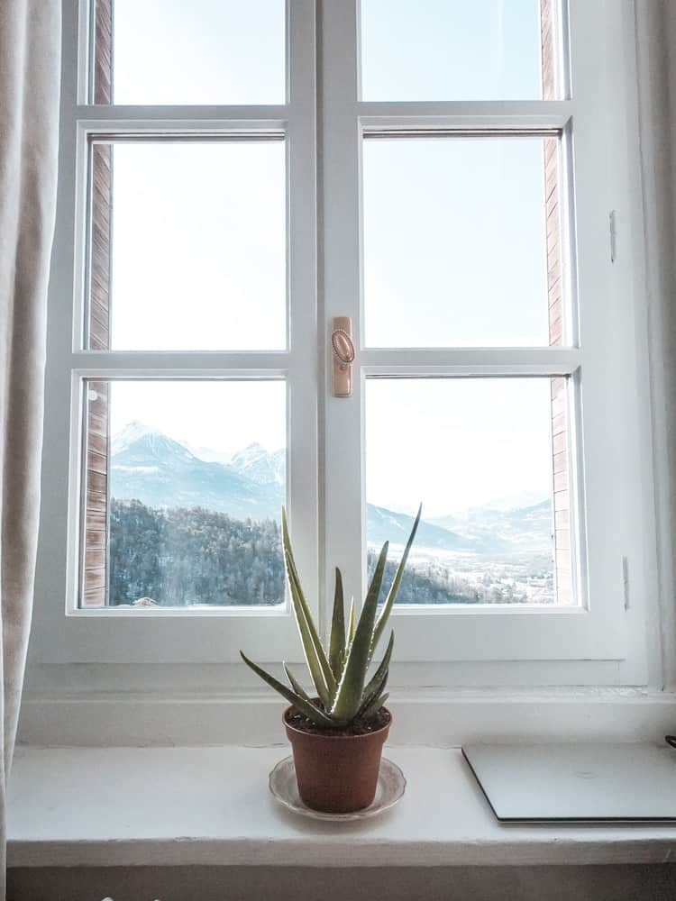 aloe vera plant on the windowsill of cloud citadel's living room space, overlooking the french alps