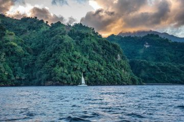 A white yacht with its sail up moored just off the coast of a tropical, deserted looking area. The sky is moody, it looks like sunset time. The water in the foreground carries a light chop.